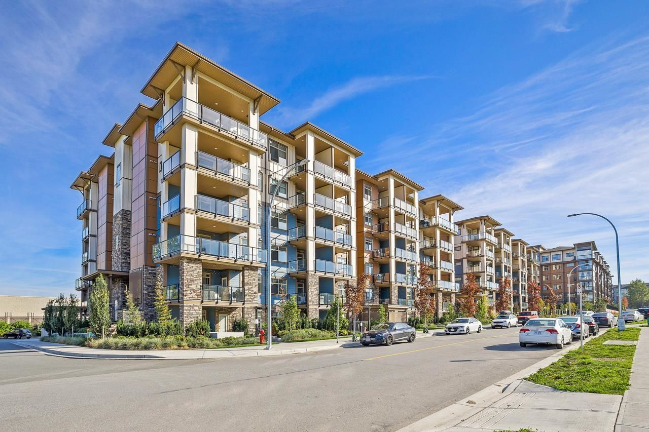 """Main Photo: 408 20673 78 Avenue in Langley: Willoughby Heights Condo for sale in """"GRAYSON"""" : MLS®# R2621279"""