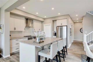 Photo 5: 393 MASTERS Avenue SE in Calgary: Mahogany Detached for sale : MLS®# C4302572