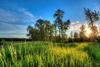 Photo 13: 217 Riverview Way: Rural Sturgeon County Rural Land/Vacant Lot for sale : MLS®# E4257225