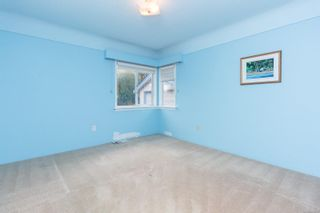 Photo 19: 1679 Derby Rd in Saanich: SE Mt Tolmie House for sale (Saanich East)  : MLS®# 870377