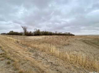 Photo 42: South Wiseton Acreage in Elrose: Residential for sale : MLS®# SK873952