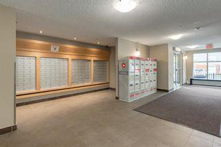 Photo 19: 2509 11811 Lake Fraser Drive SE in Calgary: Lake Bonavista Apartment for sale : MLS®# A1152043