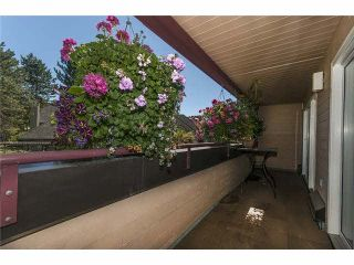 """Photo 13: 11 3980 CANADA Way in Burnaby: Burnaby Hospital Townhouse for sale in """"LODGES AT CADCADE VILLAGE"""" (Burnaby South)  : MLS®# V1131083"""