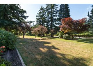 """Photo 2: 17725 20 Avenue in Surrey: Hazelmere House for sale in """"NCP 4"""" (South Surrey White Rock)  : MLS®# R2184388"""