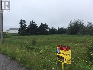 Photo 5: 93 West Street AND 17 Boland Avenue in Stephenville: Vacant Land for sale : MLS®# 1179881