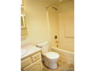 Photo 7: 303 720 Vancouver St in VICTORIA: Vi Fairfield West Condo for sale (Victoria)  : MLS®# 720572