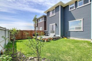 Photo 31: 378 Kings Heights Drive SE: Airdrie Detached for sale : MLS®# A1078866