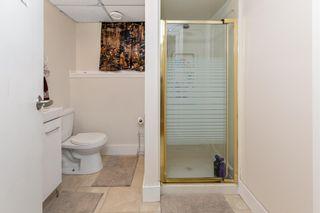 Photo 20: 2908 84 Street in Edmonton: Zone 29 House for sale : MLS®# E4249144