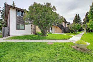 Photo 37: 139 Cedar Springs Gardens SW in Calgary: Cedarbrae Row/Townhouse for sale : MLS®# A1059547