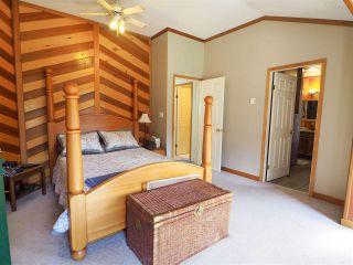 Photo 17: 14685 SQUAMISH VALLEY Road in Squamish: Upper Squamish House for sale : MLS®# R2557539
