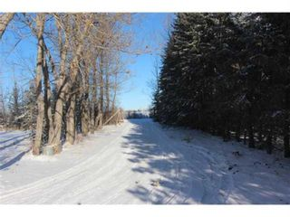 Photo 4: 34165 Township Road 240A in Rural Rocky View County: Rural Rocky View MD Detached for sale : MLS®# A1070549