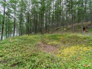 Photo 7: 5364 S SETON Lake: Lillooet Lots/Acreage for sale (South West)  : MLS®# 161243