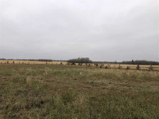 Photo 15: TWP RD 583 Range Rd 271: Rural Westlock County Rural Land/Vacant Lot for sale : MLS®# E4218433