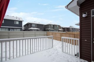 Photo 28: 156 Redstone Heights NE in Calgary: Redstone Detached for sale : MLS®# A1066534