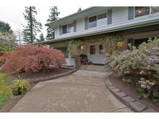 Photo 4: 4813 241 ST in Langley: Salmon River House for sale : MLS®# F1437603
