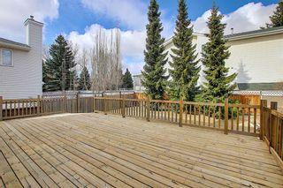 Photo 32: 30 MACEWAN RIDGE Place in Calgary: MacEwan Glen Detached for sale : MLS®# A1092445