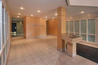Photo 8: 203 7 St. Anne Street: St. Albert Office for lease : MLS®# E4238529