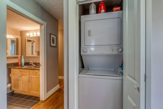 Photo 14: 302 934 2 Avenue NW in Calgary: Sunnyside Apartment for sale : MLS®# A1113791