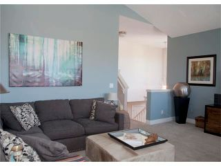 Photo 22: 67 CHAPMAN Way SE in Calgary: Chaparral House for sale : MLS®# C4065212