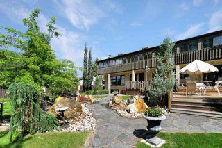 Photo 38:  in Edmonton: Zone 14 House for sale : MLS®# E4252258