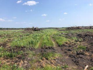 Photo 1:  in Grunthal: R17 Farm for sale : MLS®# 202118621