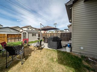 Photo 33: 11891 Coventry Hills Way NE in Calgary: Coventry Hills Detached for sale : MLS®# A1109471