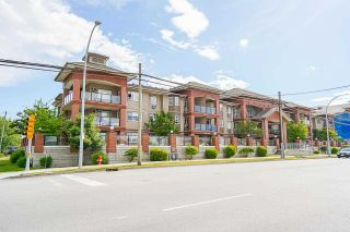 """Photo 1: 215 19774 56 Avenue in Langley: Langley City Condo for sale in """"Madison Station"""" : MLS®# R2584575"""