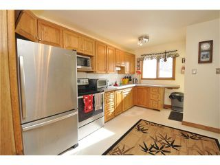 Photo 14: 2407 52 Avenue SW in Calgary: North Glenmore Park House for sale : MLS®# C4087732