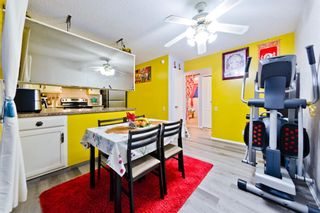 Photo 29: 4728 Rundlehorn Drive NE in Calgary: Rundle Detached for sale : MLS®# A1051594