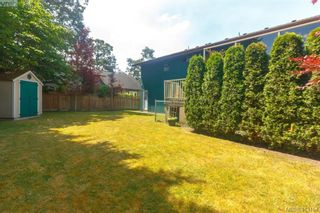 Photo 34: 4159 Tuxedo Dr in VICTORIA: SE Lake Hill House for sale (Saanich East)  : MLS®# 819260