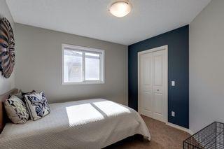 Photo 30: 62 Brightonstone Passage SE in Calgary: New Brighton Detached for sale : MLS®# A1149858