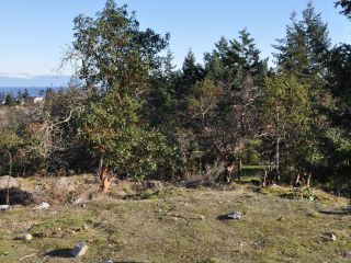 Photo 15: LOT 3 BROMLEY PLACE in NANOOSE BAY: PQ Fairwinds Land for sale (Parksville/Qualicum)  : MLS®# 802119