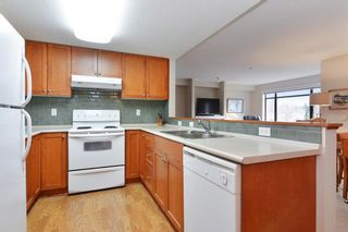 """Photo 8: 309 8880 202 Street in Langley: Walnut Grove Condo for sale in """"The Residence"""" : MLS®# R2247725"""