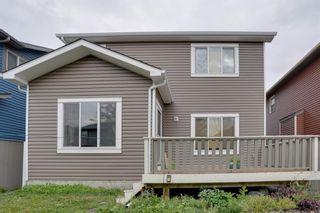 Photo 46: 139 Saddlecrest Gardens NE in Calgary: Saddle Ridge Detached for sale : MLS®# A1142059