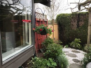 """Photo 17: 5 8540 COOK Road in Richmond: Brighouse Townhouse for sale in """"'Caroline Place'"""" : MLS®# R2164413"""
