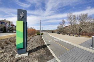 Photo 28: 165 333 RIVERFRONT Avenue SE in Calgary: Downtown East Village Condo for sale : MLS®# C4097070