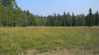 Photo 13: Corner of 178 Ave & 336 St W: Rural Foothills County Land for sale : MLS®# A1053038