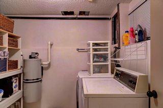 Photo 16: 110 DEERFIELD Terrace SE in Calgary: Deer Ridge House for sale : MLS®# C4123944