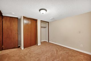Photo 25: 123 Edgewood Drive NW in Calgary: Edgemont Detached for sale : MLS®# A1070079