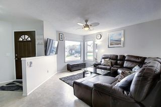 Main Photo: 148 APPLESIDE Close SE in Calgary: Applewood Park Detached for sale : MLS®# A1067613