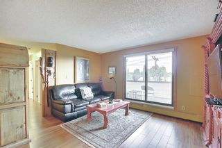 Photo 5: 212 8604 48 Avenue NW in Calgary: Bowness Apartment for sale : MLS®# A1138571