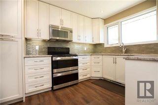 Photo 8: 274 Hazelwood Avenue in Winnipeg: Meadowood Residential for sale (2E)  : MLS®# 1821001