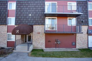 Photo 17: 11A 80 Galbraith Drive SW in Calgary: Glamorgan Apartment for sale : MLS®# A1097339