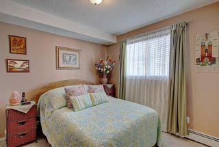 Photo 20: 3317 10 PRESTWICK Bay SE in Calgary: McKenzie Towne Apartment for sale : MLS®# C4291640