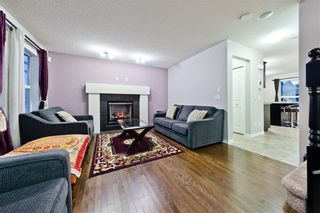Photo 20: 169 SKYVIEW RANCH DR NE in Calgary: Skyview Ranch House for sale : MLS®# C4278111
