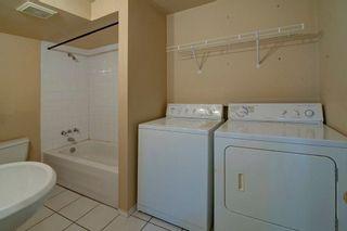 Photo 22: 244 BEDDINGTON Drive NE in Calgary: Beddington Heights House for sale : MLS®# C4195161