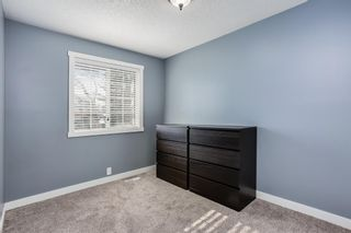Photo 12: 100 Martinwood Road NE in Calgary: Martindale Detached for sale : MLS®# A1071596