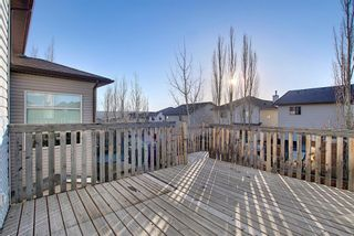 Photo 48: 45 Pantego Link NW in Calgary: Panorama Hills Detached for sale : MLS®# A1095229