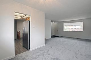 Photo 9: 1124 Northmount Drive NW in Calgary: Brentwood Detached for sale : MLS®# A1144480