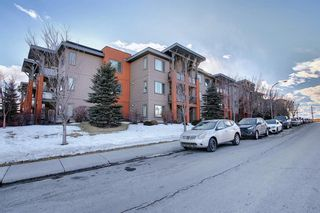 Photo 31: 119 2727 28 Avenue SE in Calgary: Dover Apartment for sale : MLS®# A1077846